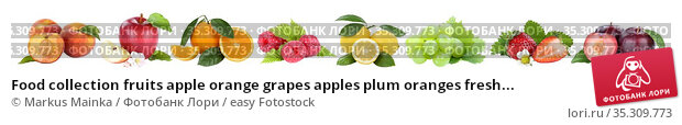 Food collection fruits apple orange grapes apples plum oranges fresh... Стоковое фото, фотограф Markus Mainka / easy Fotostock / Фотобанк Лори