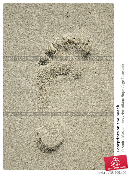 Footprints on the beach. Стоковое фото, фотограф Andre Maslennikov / age Fotostock / Фотобанк Лори