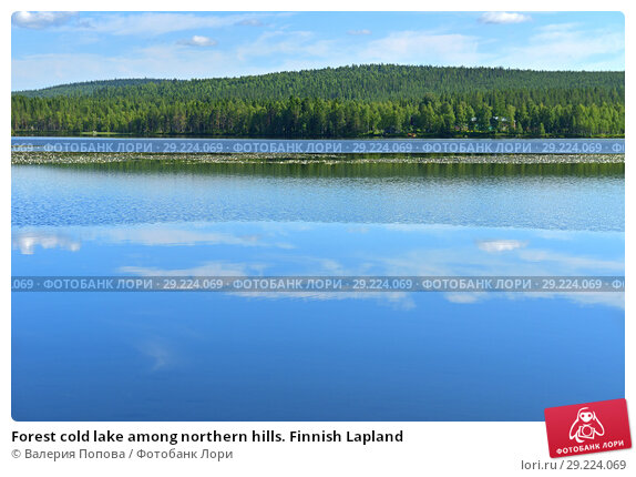 Купить «Forest cold lake among northern hills. Finnish Lapland», фото № 29224069, снято 15 июля 2018 г. (c) Валерия Попова / Фотобанк Лори