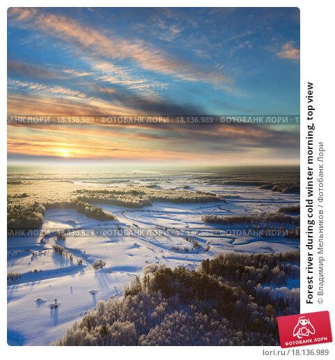 Купить «Forest river during cold winter morning, top view», фото № 18136989, снято 16 декабря 2015 г. (c) Владимир Мельников / Фотобанк Лори