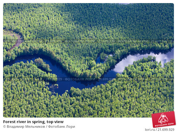 Forest river in spring, top view, фото № 21699929, снято 20 июня 2015 г. (c) Владимир Мельников / Фотобанк Лори
