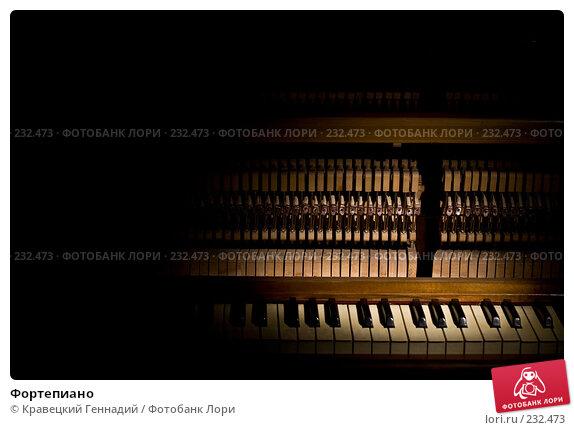 Фортепиано, фото № 232473, снято 3 октября 2006 г. (c) Кравецкий Геннадий / Фотобанк Лори