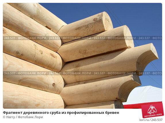 Купить «Фрагмент деревянного сруба из профилированных бревен», фото № 243537, снято 17 июня 2005 г. (c) Harry / Фотобанк Лори