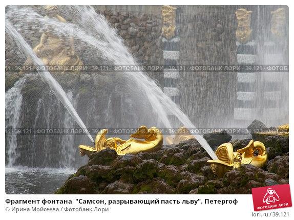 """Фрагмент фонтана  """"Самсон, разрывающий пасть льву"""". Петергоф, эксклюзивное фото № 39121, снято 25 июня 2006 г. (c) Ирина Мойсеева / Фотобанк Лори"""