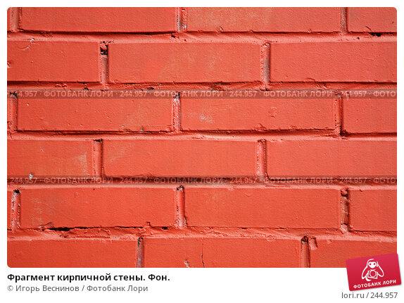 Купить «Фрагмент кирпичной стены. Фон.», фото № 244957, снято 6 апреля 2008 г. (c) Игорь Веснинов / Фотобанк Лори