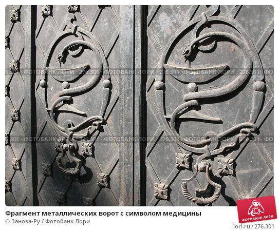 Фрагмент металлических ворот с символом медицины, фото № 276301, снято 2 мая 2008 г. (c) Заноза-Ру / Фотобанк Лори