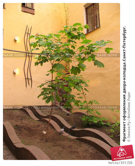 Купить «Фрагмент оформления двора-колодца.Санкт-Петербург.», фото № 311725, снято 1 июня 2008 г. (c) Заноза-Ру / Фотобанк Лори