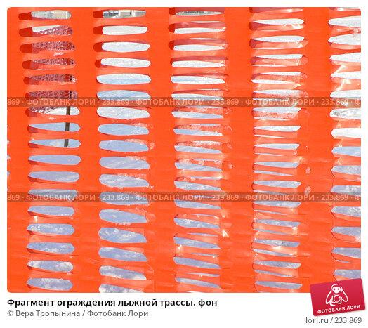 Фрагмент ограждения лыжной трассы. фон, фото № 233869, снято 30 января 2008 г. (c) Вера Тропынина / Фотобанк Лори