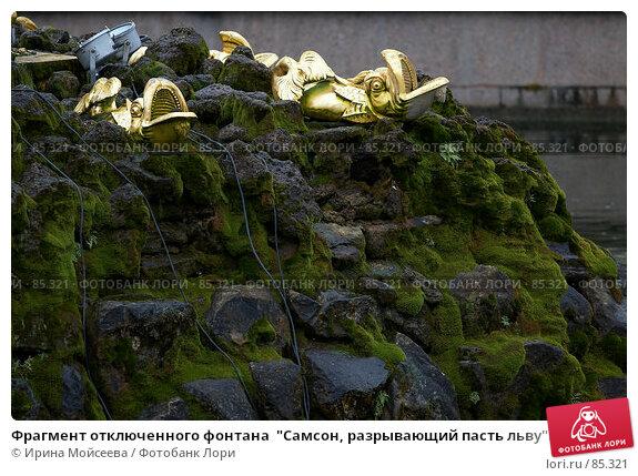 """Купить «Фрагмент отключенного фонтана  """"Самсон, разрывающий пасть льву"""".  Петергоф», эксклюзивное фото № 85321, снято 14 сентября 2007 г. (c) Ирина Мойсеева / Фотобанк Лори"""