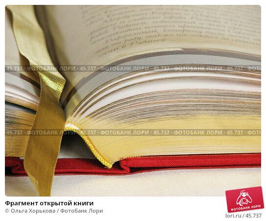 Купить «Фрагмент открытой книги», фото № 45737, снято 10 марта 2007 г. (c) Ольга Хорькова / Фотобанк Лори