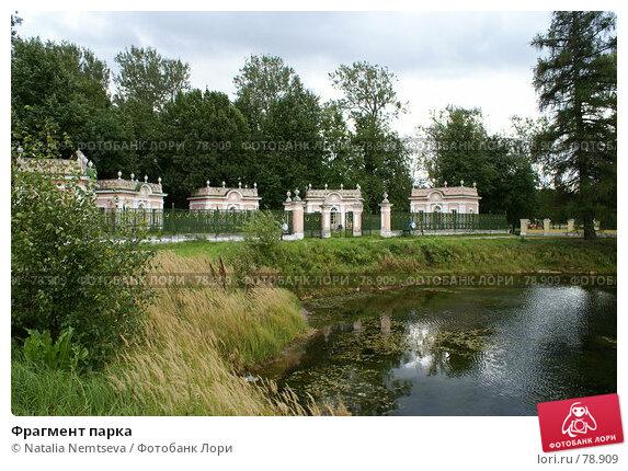 Фрагмент парка, эксклюзивное фото № 78909, снято 31 августа 2007 г. (c) Natalia Nemtseva / Фотобанк Лори