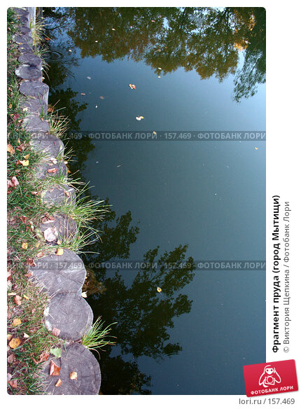 Фрагмент пруда (город Мытищи), фото № 157469, снято 23 сентября 2007 г. (c) Виктория Щепкина / Фотобанк Лори