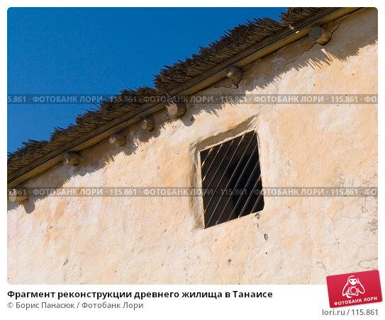 Фрагмент реконструкции древнего жилища в Танаисе, фото № 115861, снято 22 февраля 2007 г. (c) Борис Панасюк / Фотобанк Лори