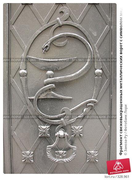 Фрагмент свежевыкрашенных металлических ворот с символом медицины, фото № 328961, снято 14 июня 2008 г. (c) Заноза-Ру / Фотобанк Лори