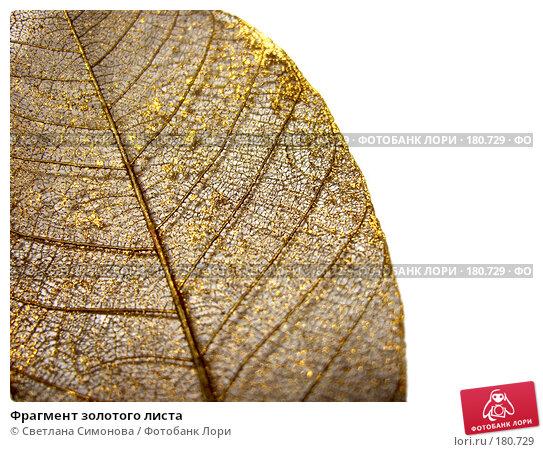Фрагмент золотого листа, фото № 180729, снято 13 января 2008 г. (c) Светлана Симонова / Фотобанк Лори