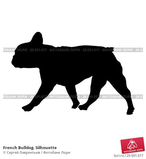 Купить «French Bulldog. Silhouette», иллюстрация № 29591017 (c) Сергей Лаврентьев / Фотобанк Лори