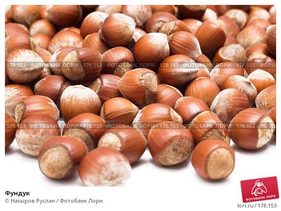 Купить «Фундук», фото № 178153, снято 17 января 2008 г. (c) Насыров Руслан / Фотобанк Лори