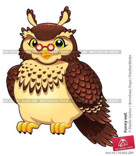 Funny owl. Стоковое фото, фотограф Danilo Sanino / PantherMedia / Фотобанк Лори