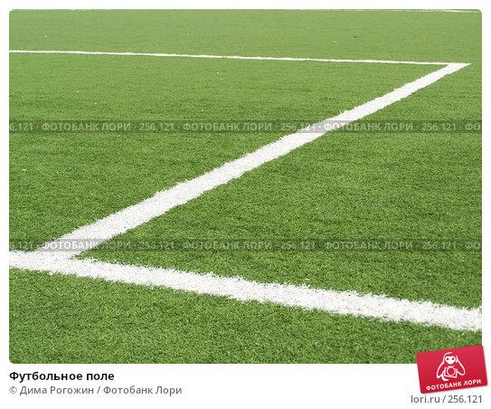 Купить «Футбольное поле», фото № 256121, снято 9 апреля 2008 г. (c) Дима Рогожин / Фотобанк Лори