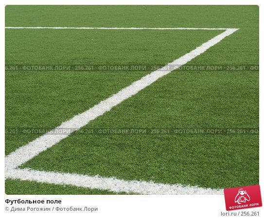 Купить «Футбольное поле», фото № 256261, снято 9 апреля 2008 г. (c) Дима Рогожин / Фотобанк Лори