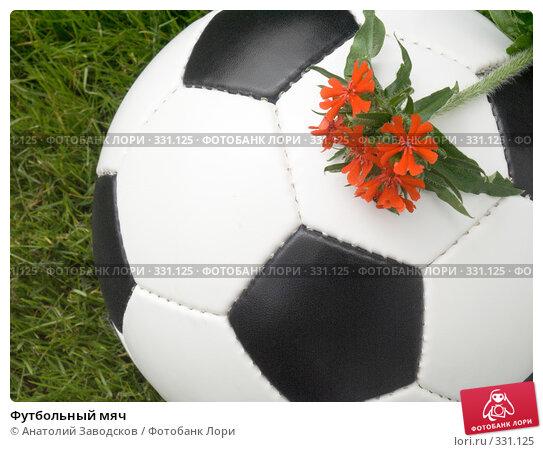 Футбольный мяч, фото № 331125, снято 22 июня 2008 г. (c) Анатолий Заводсков / Фотобанк Лори