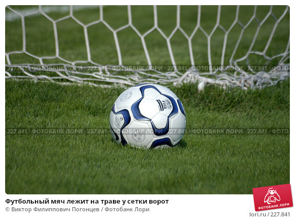 Футбольный мяч лежит на траве у сетки ворот, фото № 227841, снято 3 июля 2004 г. (c) Виктор Филиппович Погонцев / Фотобанк Лори