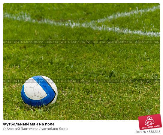 Футбольный мяч на поле, фото № 338313, снято 21 июня 2008 г. (c) Алексей Пантелеев / Фотобанк Лори