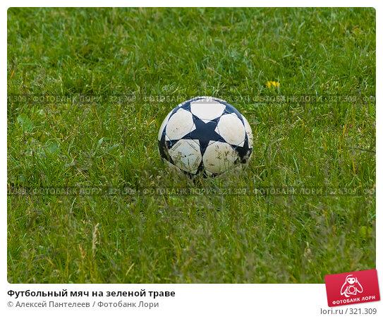 Футбольный мяч на зеленой траве, фото № 321309, снято 12 июня 2008 г. (c) Алексей Пантелеев / Фотобанк Лори