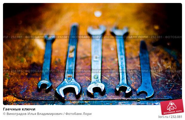 Купить «Гаечные ключи», фото № 232081, снято 25 декабря 2007 г. (c) Виноградов Илья Владимирович / Фотобанк Лори