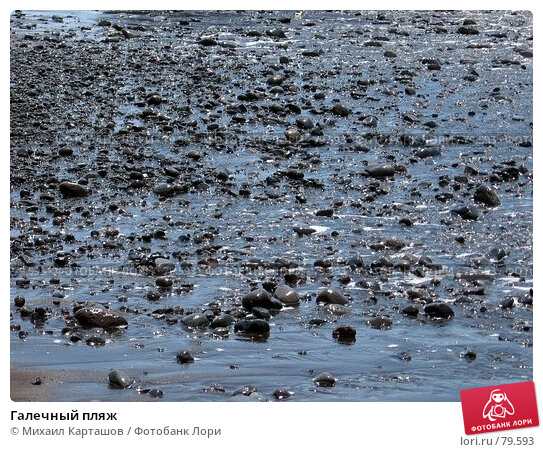Галечный пляж, эксклюзивное фото № 79593, снято 1 августа 2007 г. (c) Михаил Карташов / Фотобанк Лори