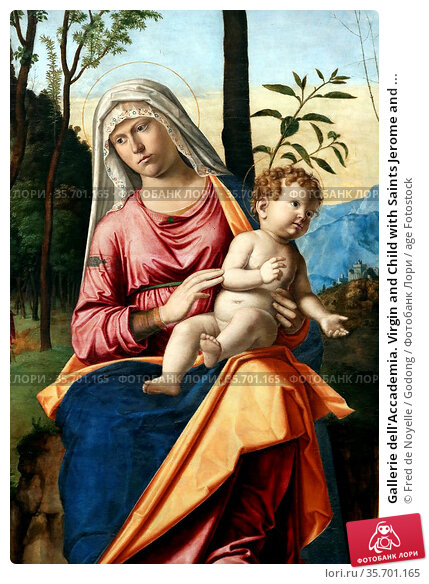 Gallerie dell'Accademia. Virgin and Child with Saints Jerome and ... Стоковое фото, фотограф Fred de Noyelle / Godong / age Fotostock / Фотобанк Лори