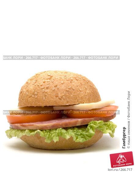 Гамбургер, фото № 266717, снято 14 марта 2008 г. (c) паша семенов / Фотобанк Лори
