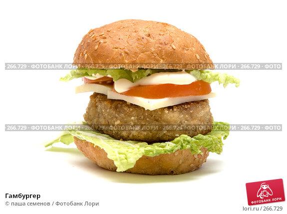 Гамбургер, фото № 266729, снято 14 марта 2008 г. (c) паша семенов / Фотобанк Лори