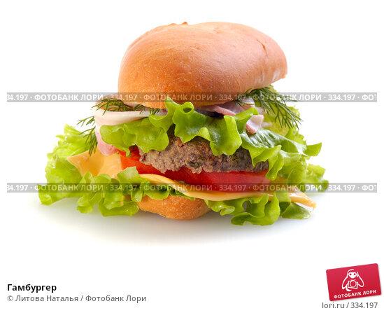 Гамбургер, фото № 334197, снято 15 января 2008 г. (c) Литова Наталья / Фотобанк Лори