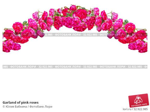 Купить «Garland of pink roses», фото № 32922985, снято 12 июля 2018 г. (c) Юлия Бабкина / Фотобанк Лори