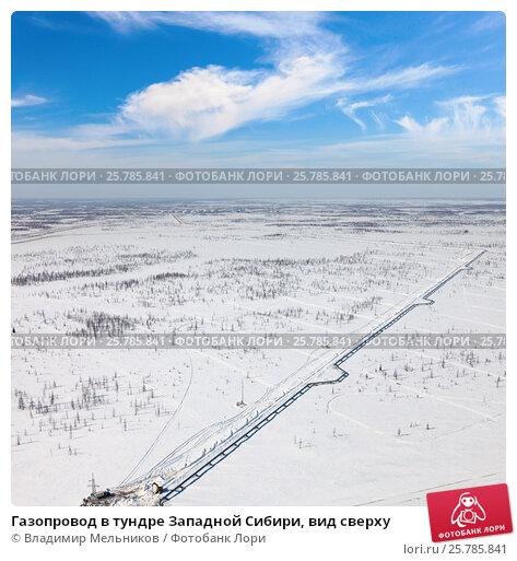 Газопровод в тундре Западной Сибири, вид сверху, фото № 25785841, снято 5 апреля 2016 г. (c) Владимир Мельников / Фотобанк Лори