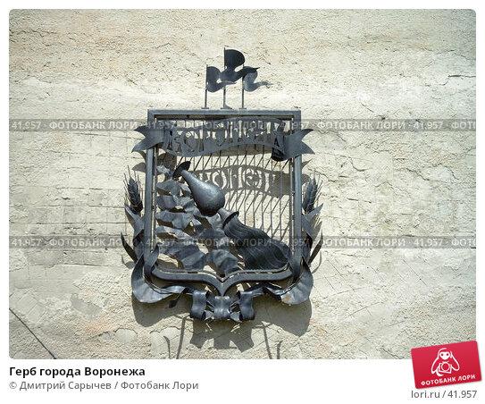 Купить «Герб города Воронежа», фото № 41957, снято 29 июня 2004 г. (c) Дмитрий Сарычев / Фотобанк Лори