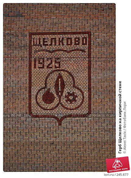 Герб Щелково на кирпичной стене, эксклюзивное фото № 245877, снято 1 апреля 2008 г. (c) Alexei Tavix / Фотобанк Лори
