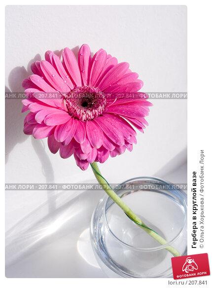 Купить «Гербера в круглой вазе», фото № 207841, снято 25 апреля 2018 г. (c) Ольга Хорькова / Фотобанк Лори