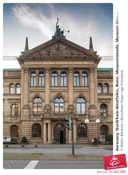 Купить «Germany, Nordrhein-Westfalen, Bonn, Museumsmeile, Museum Alexander Koenig, natural history museum.», фото № 21003589, снято 6 ноября 2014 г. (c) age Fotostock / Фотобанк Лори