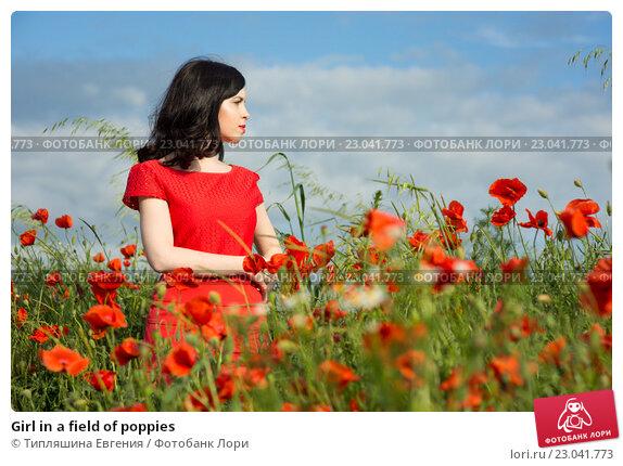 Купить «Girl in a field of poppies», фото № 23041773, снято 30 мая 2016 г. (c) Типляшина Евгения / Фотобанк Лори