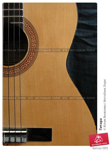 Гитара, фото № 973, снято 25 февраля 2006 г. (c) Юлия Яковлева / Фотобанк Лори