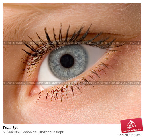Глаз Eye, фото № 111893, снято 28 июня 2007 г. (c) Валентин Мосичев / Фотобанк Лори