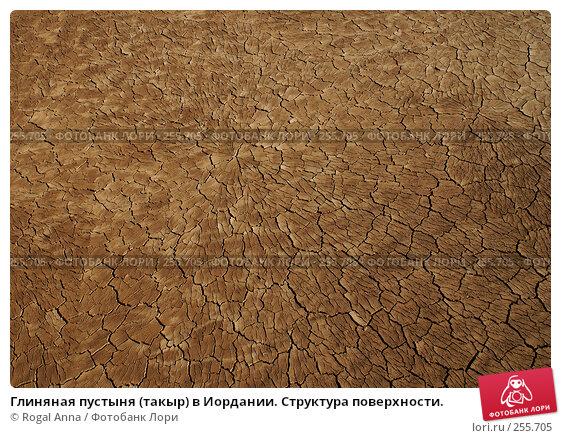 Глиняная пустыня (такыр) в Иордании. Структура поверхности., фото № 255705, снято 3 января 2007 г. (c) Rogal Anna / Фотобанк Лори
