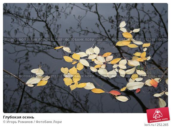 Купить «Глубокая осень», фото № 252265, снято 4 ноября 2006 г. (c) Игорь Романов / Фотобанк Лори