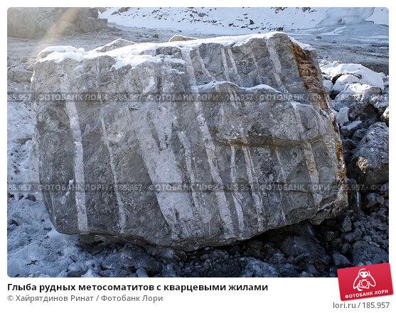 Глыба рудных метосоматитов с кварцевыми жилами, фото № 185957, снято 21 января 2008 г. (c) Хайрятдинов Ринат / Фотобанк Лори