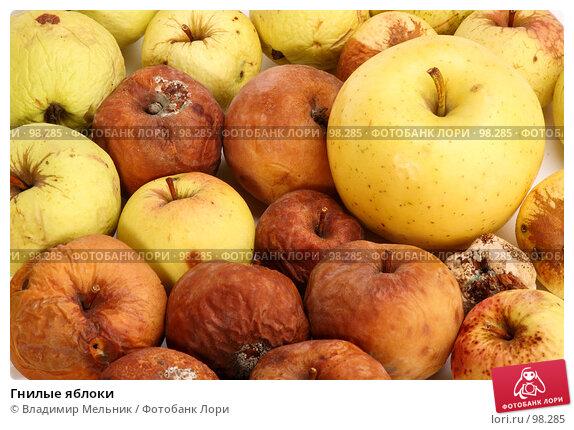 Гнилые яблоки, фото № 98285, снято 11 октября 2007 г. (c) Владимир Мельник / Фотобанк Лори