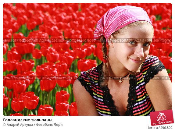 Голландские тюльпаны, фото № 296809, снято 25 апреля 2008 г. (c) Андрей Аркуша / Фотобанк Лори