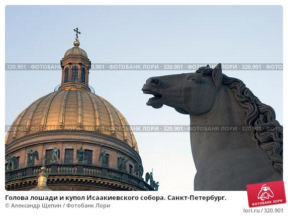 Голова лошади и купол Исаакиевского собора. Санкт-Петербург., эксклюзивное фото № 320901, снято 30 мая 2008 г. (c) Александр Щепин / Фотобанк Лори
