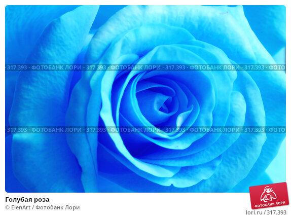 Купить «Голубая роза», фото № 317393, снято 21 ноября 2017 г. (c) ElenArt / Фотобанк Лори
